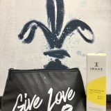 painted fleur de lis over a bag that says 'give love'